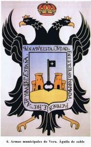 armas municipales 2007