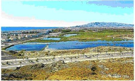 EL SALAR DE LOS CANOS. ESPACIO NATURAL Y ANTRÓPICO