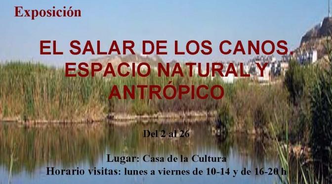 EXPOSICIÓN Y TEXTOS. EL SALAR DE LOS CANOS