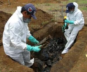 Excavación fosa
