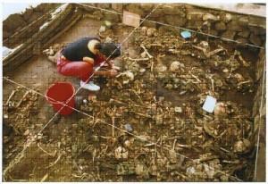 Excavación fosas