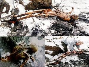 Momia de Ótzi. Una extracción 'irregular' altamente contaminante