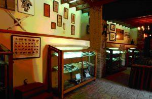 Museo Taurino - copia