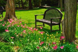 jardín y banco